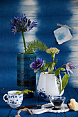 Agapanthus, anemone, carnation and clematis in vase against blue wall