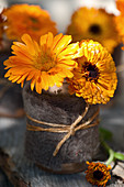 Posy of pot marigolds in beaker wrapped in felt and twine