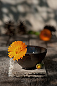 Marigold in brown bowl