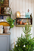 Christmas tree, plant pots and vintage-style ornaments against board wall