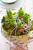 Hyacinths planted in soup tureen and decorated with moss and bead necklaces