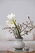 Amaryllis and branches of star magnolia in vase