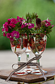 Sweet Williams and great burnet in small liqueur glasses