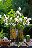 Bouquet of scented wild roses in tea caddy