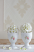 Spring arrangement of white drumstick primula in vintage-style eggcups