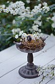 Easter egg in Easter nest in birdbath decorating table