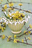 Small bouquet of cornelian cherry and snowdrops