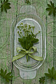 Posy of sweet woodruff flowers tied with green ribbon on glass plate