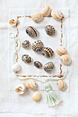 Seashells painted with patterns in black on embroidered fabric