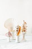 Seashells arranged on cotton reels used as plinths