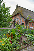 View across vegetable patch to thatched house