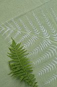 Tablecloth hand-decorated with fern motifs