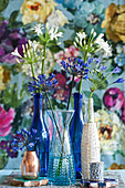 Blue and white agapanthus in bottles and vases
