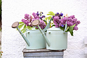 Bouquets of lilacs, branches of chestnut leaves and aquilegia in watering cans