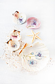 Decorating seashells with napkin decoupage violas