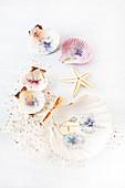 Decorating seashells with napkin decoupage violas
