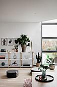 Houseplants and floor cushions in simple, modern living room