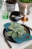 Gedeckter Tisch mit Zimmerpflanzen als Deko, Sukkulente auf dem Teller