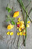 Rosenblüten, Blütenblätter und Gräser als Zutaten für Kranz