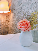 Rose in white ceramic vase