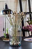 Poppy seed heads on stalks arranged in jar