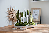 DIY Advent wreath with miniature trees made of moss