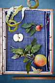Apples, apple slices and apple peel on blue fabric