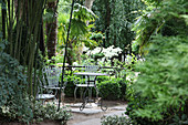 Shady seating area below palm trees in Jardin Agapanthe, Normandy, France