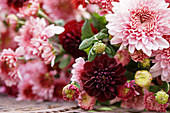 Lying autumn bouquet of chrysanthemums and dahlias