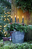 Advent wreath of juniper branches and grey candles in metal bucket