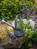 Bouquet of white and purple garden flowers in vintage watering can