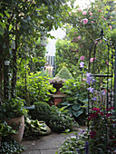 Garden with climbing rose on the rose arch, climbing stele, perennials on the path