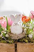 Osterhase im Nest in einem Trog mit Frühlingsblumen