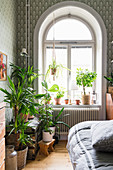 Houseplants in front of arched window in bedroom with patterned wallpaper