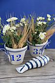 Weiße Astern mit Gerstenähren in blau-weißen Töpfchen, Holzfisch als Deko
