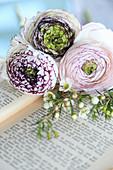 Ranunkelblüten und Waxflower