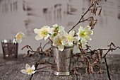 Small bouquet of Christmas rose flowers in a silver cup, hazel branches