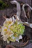 Bouquet of Christmas rose and carnation flowers