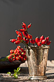 Dog-rose rosehip in a silver tumbler
