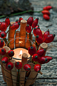 Lantern with rose hips and woods