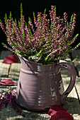 Budding heather in a pitcher