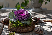 Purple ornamental cabbage in a wreath made of natural materials, cones as decoration