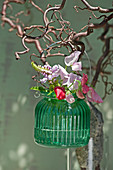 Bouquet of sweet peas and obedient plant hung from branch of contorted hazel