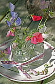 Sweet peas in small glasses