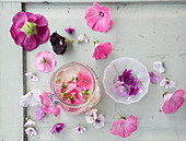 Hollyhock, mallow and marshmallow flowers and homemade mallow toner
