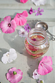 Homemade mallow oil (helps with dry skin and liver spots)