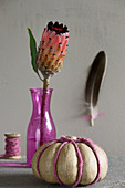 Protea in pink case and fake pumpkin decorated with woollen yarn