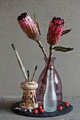 Protea flowers in glass bottle