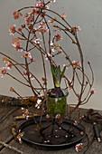 Ikebana arrangement of Bodnant viburnum twigs and hyacinth in glass jar