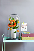Vase of tulips under large glass cover